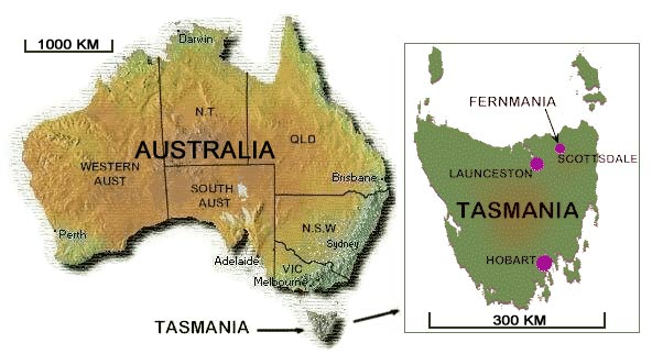 Map Of Australia And Tasmania.Fernmania Dicksonia Antarctica Suppliers